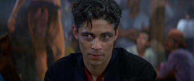 Benicio Del Toro as Dario