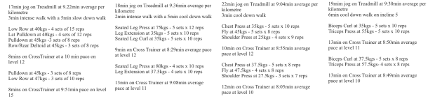 4 day workout at the gym